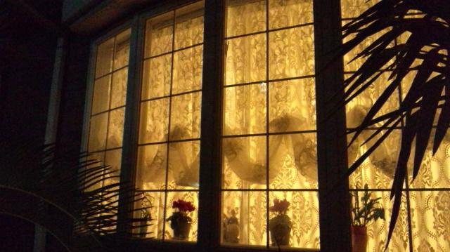 バルーンシェード 出窓 イタリア製カーテン